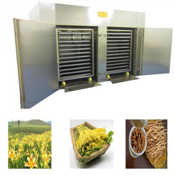 Hot Air High Efficiency Mushroom Dryer Machine / Industrial Food Dryers